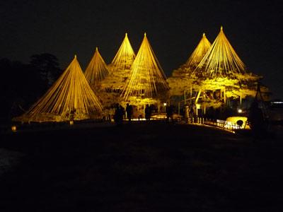 兼六園 松の木のライトアップ